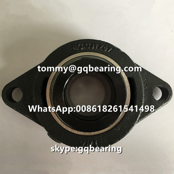 INA RCJTZ35 Two-bolt Flange Pillow Block Ball Bearing in cast iron