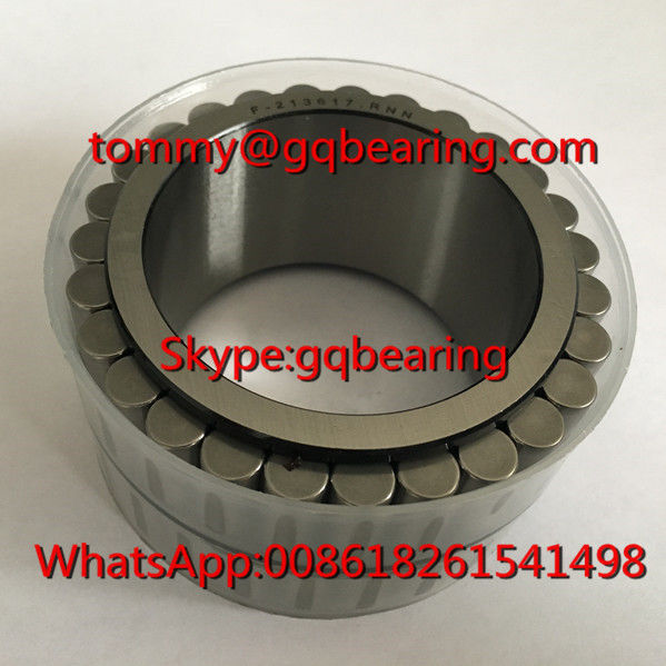 Gcr15 Steel Material F-213617.RNN Double Row Cylindrical Roller Bearing without Cage